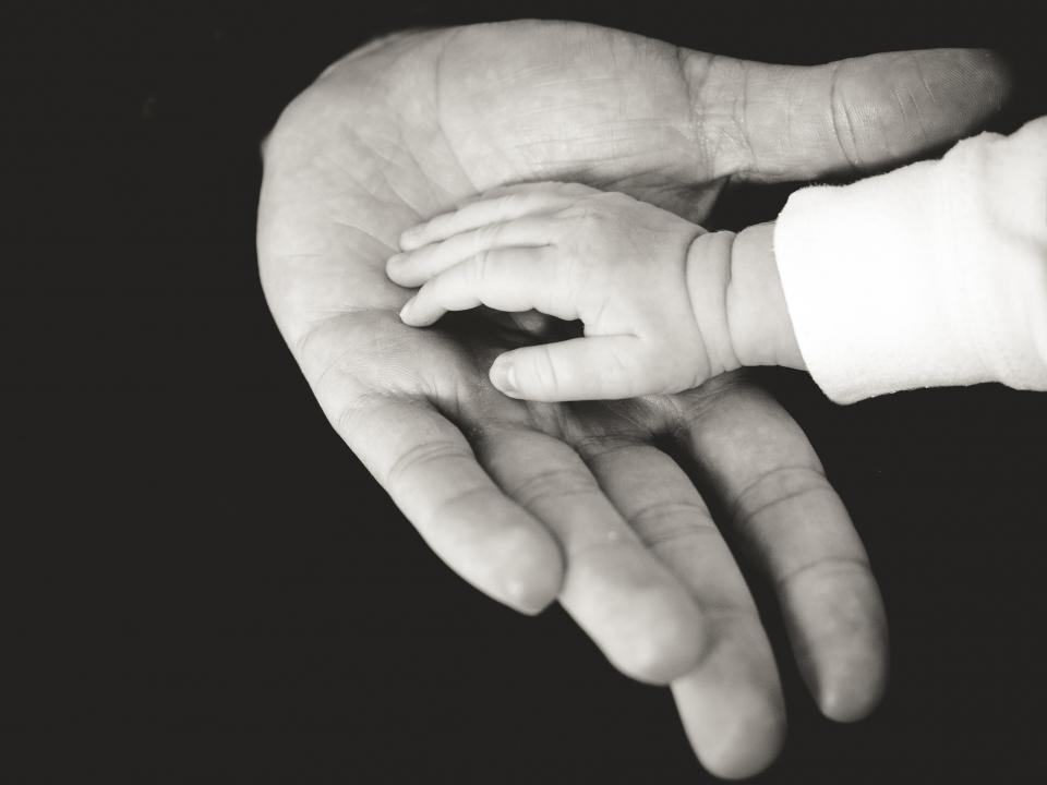 adoption article, baby hand in parent hand