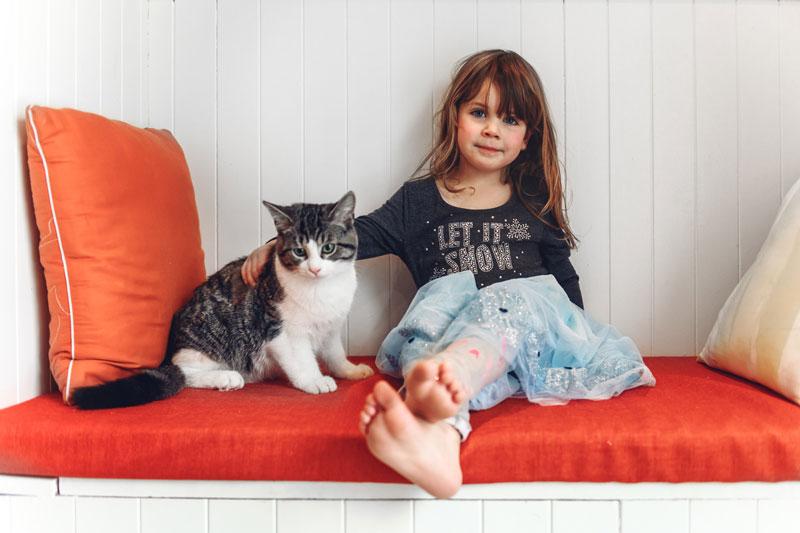 Cats Can Teach Your Children