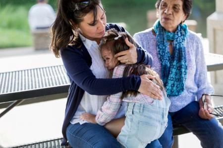 child bit by dog attorney