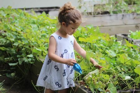 garden activities with kids