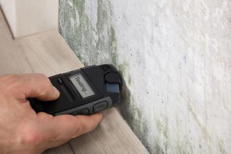 mold on the wall testing