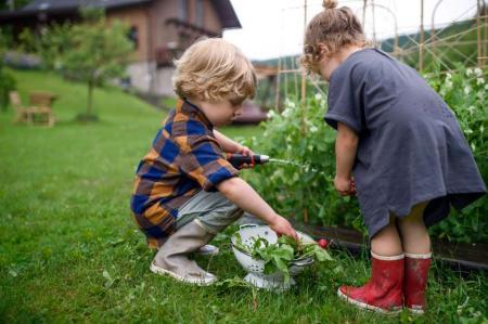 Teaching Kids sustainable living
