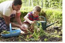 starting herb garden with kids