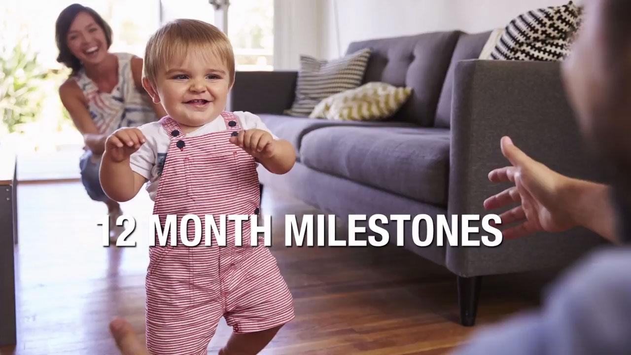 12 Month Milestones