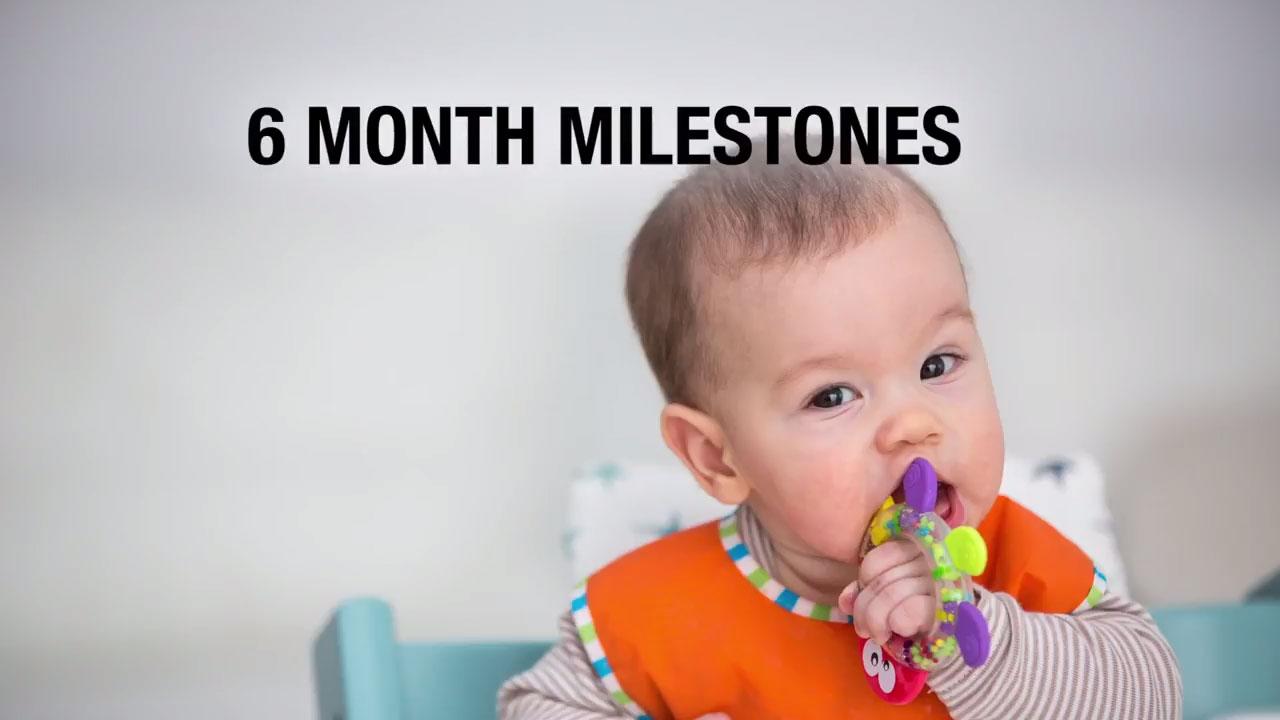 6 Month Milestones