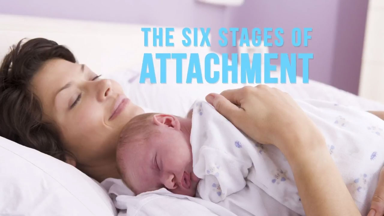The Six Stages of Attachment